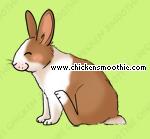 http://static.chickensmoothie.com/archive/image.php?k=1DA4B4DDA4D1770100AFC1842CBD969D&bg=99c57c