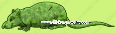image.php?k=1E2E31209B4B97C9DD5B62E2A5B65AF0&bg=ffffff