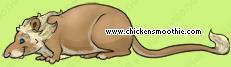 image.php?k=595BD5BACE63168865719964BFA5A4D3&bg=ffffff