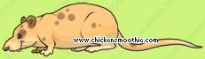 image.php?k=906CE408614E4BD74E41B24CFE4343BB&bg=ffffff