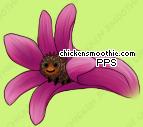 image.php?k=B1CA146AF851BE7AAA7D407D4D2C960B&bg=99c57c