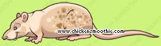 image.php?k=B961AF0681EF11CC018C3091B333B4B1&bg=ffffff