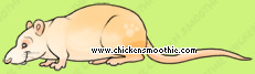 image.php?k=E611F2988AEA0296E2820FEB5A3A8634&bg=ffffff