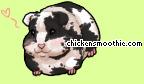 Chicken Smoothie? Pic