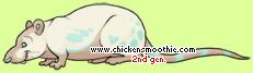 pic.php?k=7B104499D67E62AC036F8A0BA11E75A3&bg=ffffff
