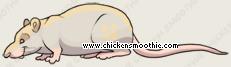 image.php?k=F47075F3CD8D517C631FD1677F8AE907&bg=ece9e1.png