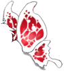 White/Red Butterfly Wing