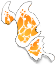 White/Orange Butterfly Wings