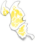 White/Yellow Butterfly Wings